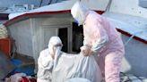 海巡攔截漁船非法走私上千公斤魚翅乾貨 市價逾600萬