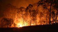News On The Move: California wildfires kill ten people, Rito Tinto CEO resigns