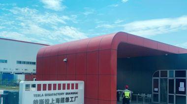 Tesla 放棄擴張中國市場?傳停上海工廠買地計劃 - ezone.hk - 科技焦點 - 科技汽車