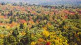 Fall begins Wednesday. Here's where to see foliage this year on the Midcoast.