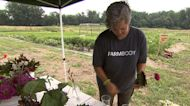 Military veterans find new mission by learning the skills of farming