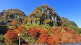 日本三大紅葉 大分縣紅葉耶馬溪單車道追楓去