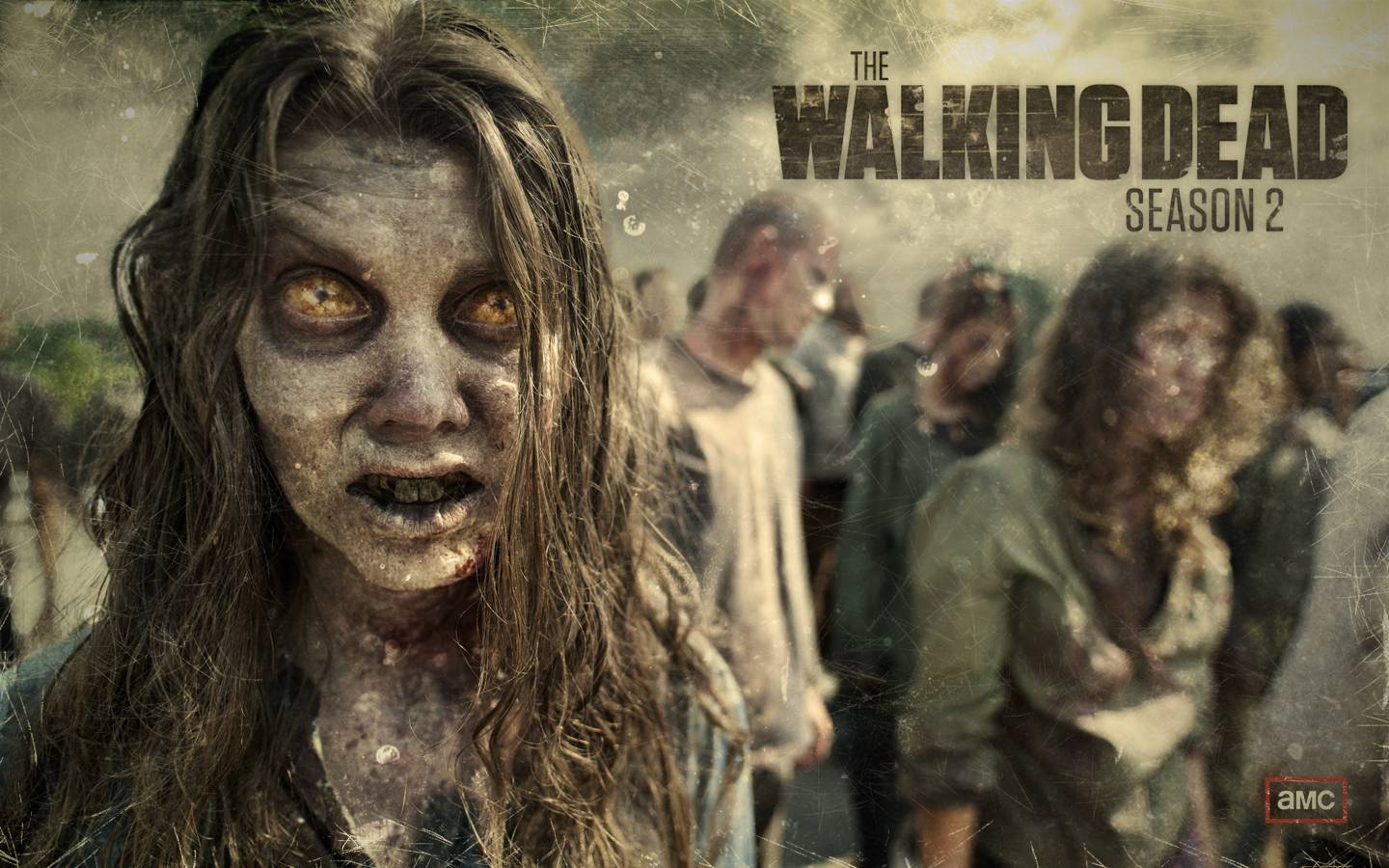 The-Walking-Dead-Walkpapers-D-the-walkin