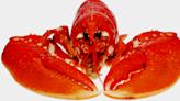 澳媒引牛津學者 剖析涉華言論如何散播新冠肺炎來自美國龍蝦 | 立場報道 | 立場新聞