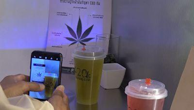 泰國鬆綁大麻使用 可成為食品或醫療