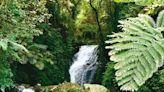 礁溪老爺、呆水溫泉、抹茶山 串起五峰旗旅遊資源