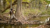 Better development or dirtier drinking water? Ohio moves to change its stream regulations