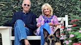 Joe and Jill Biden's Dog, Champ, Dies at 13