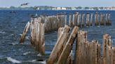 Will hurricane season end with a whimper? Watch La Niña, scientists warn.