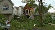 Expert shares tips to keep trees healthy through storms, drought
