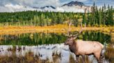 Canada's most beautiful national parks revealed
