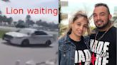 Widow in Rickenbacker Motorcycle Crash Sues City of Miami for Police Negligence