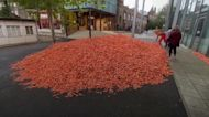 Twenty-nine tonnes of carrots dumped outside London university for art installation