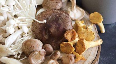 抗癌神器!吃對菇類 竟有意想不到的強大健康好處