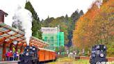 蒸汽火車賞楓紅!主題林鐵看高空微笑搶訂票時間出爐