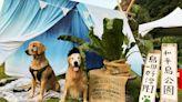和平島舉辧「島嶼好漂PET」 邀毛小孩家庭參與