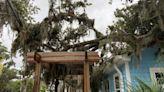 Port Royal Veterinary Hospital set for 'soft opening' after Tropical Storm Elsa damage