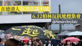 全球22國上街撐港 周永康:如水再聚抗霸權   蘋果日報