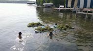 Seaweed takes over Lake Minnetonka in Minnesota