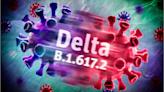 Former FDA commissioner: N95 and KN95 masks are best for Delta variant