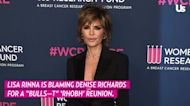 Lisa Rinna Came for Denise Richards the 'Most' During 'RHOBH' Reunion