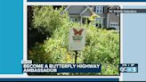 Become a North Carolina Butterfly Highway Ambassador