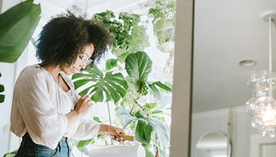 The 17 Best Indoor Hanging Plants to Elevate Your Space