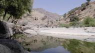 Iraq seeks neighborly help with shrinking rivers