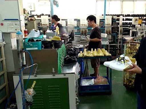 台灣鳳梨潮 全國農業金庫、產紡協會速建大平台助銷升級 - 自由財經