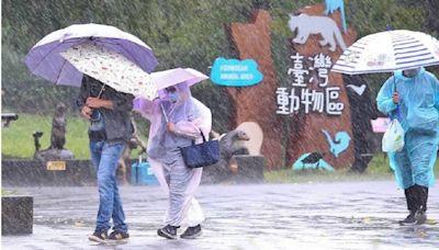 圓規颱風暴風圈明明沒碰到「為何超有感?」 專家解答了