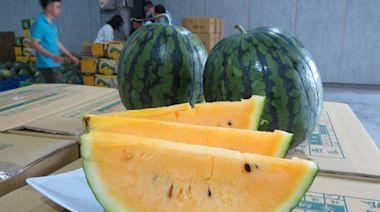健康網》挑西瓜「紅肉、黃肉」哪個好? 營養師:這款「瓜胺酸」較豐富! - 樂活飲食 - 自由健康網