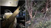 這是神功護體嗎?特斯拉 Model 3 翻覆撞毀人沒事,車主謝天也謝馬斯克