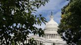 House Democrats strip Iron Dome money from government funding bill