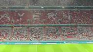 Stewards Tackle Rainbow Flag-Waving Euro 2020 Pitch Invader