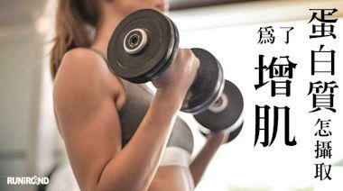 為了增肌,蛋白質到底該如何攝取?蛋白質攝取大哉問蛋白質是構成人體組織的基本成分,身體髮膚、肌肉骨骼跟細胞無一不是由蛋白質為主要原料。當一天所需要的蛋白質不足以供給消耗,肌肉就會被分解成蛋白質來利用(負氮...