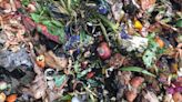 Philly is finally opening 12 community composting sites, after a pandemic delay