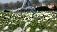 In photos: Spring season across the globe