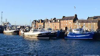 Coronavirus is death knell for Scottish fishing industry | DW | 01.04.2020