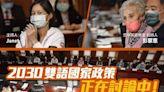 小英讚張雅琴 讓世界聽見台灣主張