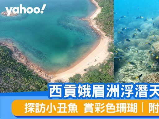 浮潛好去處丨西貢娥眉洲浮潛天堂 探訪小丑魚賞彩色珊瑚丨附交通詳情