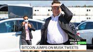 Bitcoin Has Nothing to Do With Tesla Price Target: Adam Jonas