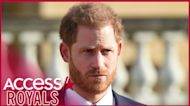 Prince Harry Writing Memoir On The 'Highs & Lows': 'We Have More In Common Than We Think'
