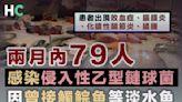 【買餸注意】兩月內79人感染侵入性乙型鏈球菌 因曾接觸鯇魚等淡水魚