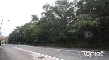 【土地共享】政府接首宗申請 南豐大埔汀角路兩綠化地皮可建1,642伙 - 香港經濟日報 - TOPick - 新聞 - 社會