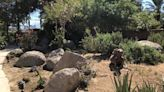 History museum in Indio looks to revive Japanese garden: 'An investment for years to come'