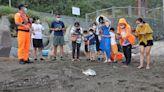 海管處再次救援海洋動物 小欖蠵龜重返大海懷抱 | 蕃新聞