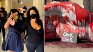 Accused Santa Rosa pig blood vandals targeted wrong house: Police