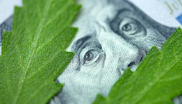 House Approves Marijuana Banking Reform Bill — What It Means for the State of Legal Cannabis