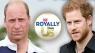 OMG! Prince William Is Also Writing a Book After Harry's Memoir News
