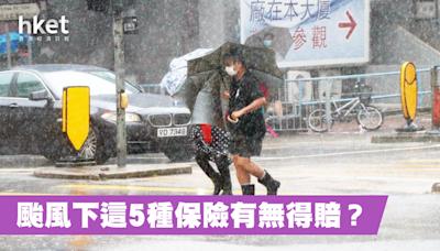 【颱風圓規】颱風秋季來襲 這5種保險有無得賠? - 香港經濟日報 - 理財 - 財富管理 - 保險